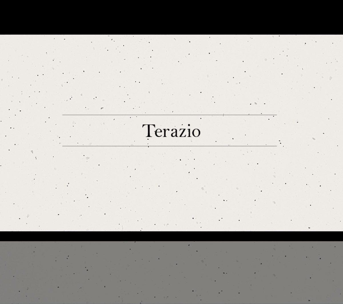 Terazio Stone Ambassador